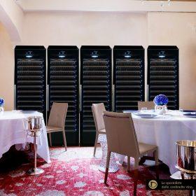 Armadio Cantina climatizzato professionale 975 bottiglie