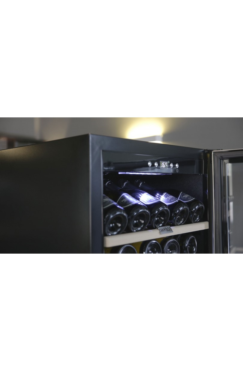 Professional Wine Cooler 126 bottles compressor